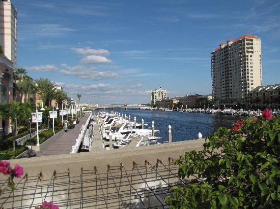 mariott waterside tampa fl picture of tampa marriott. Black Bedroom Furniture Sets. Home Design Ideas