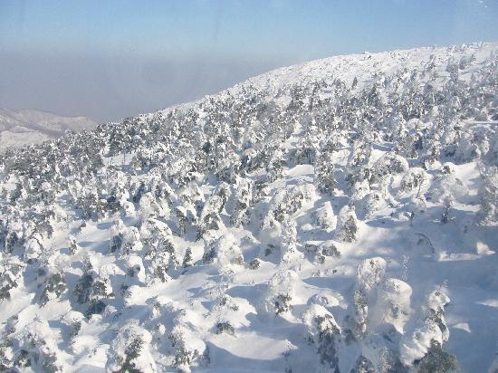 Yamagata, Japan: 樹氷1