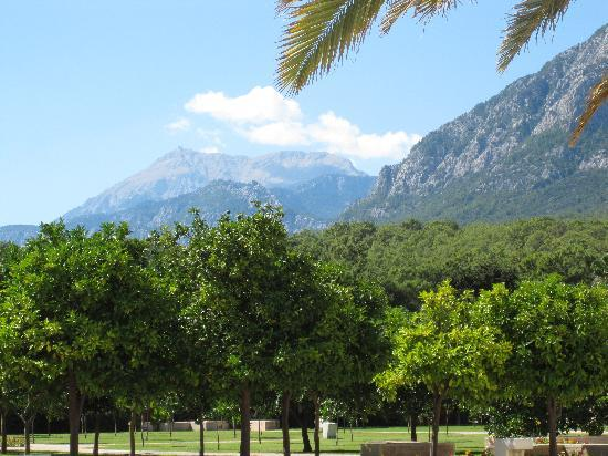 Club Med Palmiye: The view from the pool