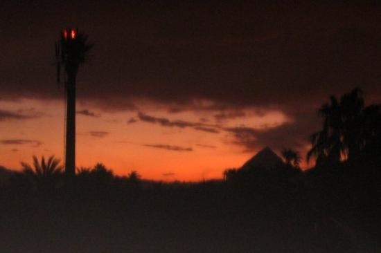 Loreto, México: Note the cell tower disguised as a palm tree