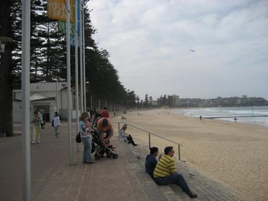 Manly Beach : Manley Beach