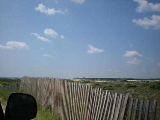 Dewey Beach, DE: Drive on beach