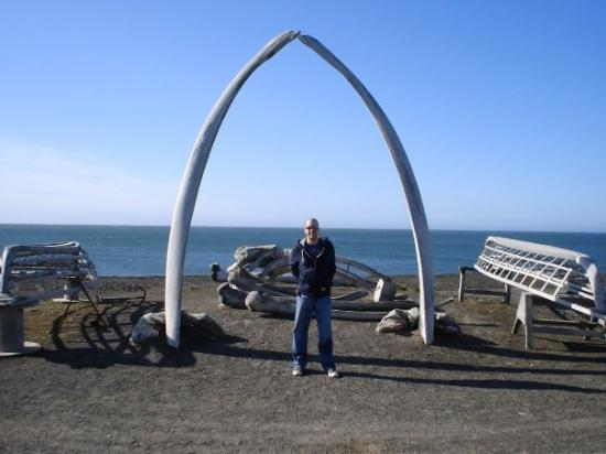 arch russian whale - photo #38