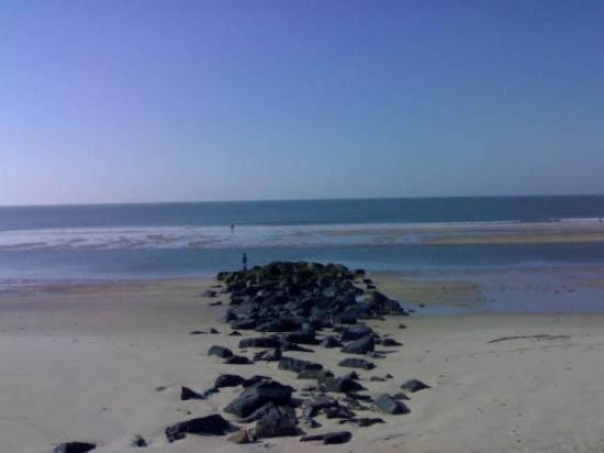 Matalascanas, สเปน: Playa de Matalascañas