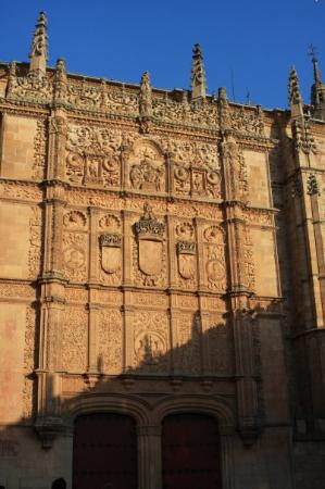 Universidad de Salamanca: They said that if you can find a frog within this wall, it's lucky =)) so most of tourists spent