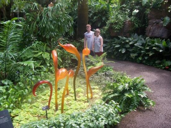 missouri botanical garden chihuly glass at the botanical garden in st louis - Botanical Garden St Louis