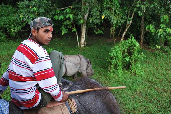 Hotel Parkside: chasing black rhinos