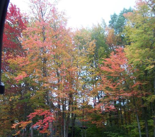Vermont: A Plethora of Color