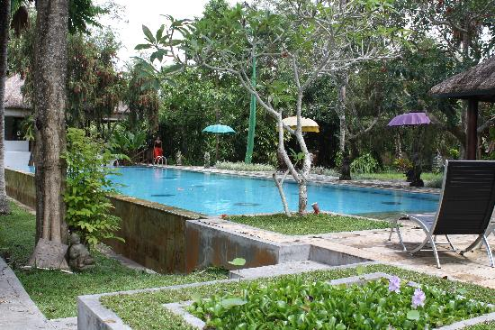 Ubud Villas and Spa: piscine 2