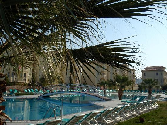 Palmin Sunset Plaza: Swimming pool