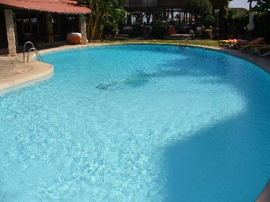 Hotel Tropicana : Hotel Pool