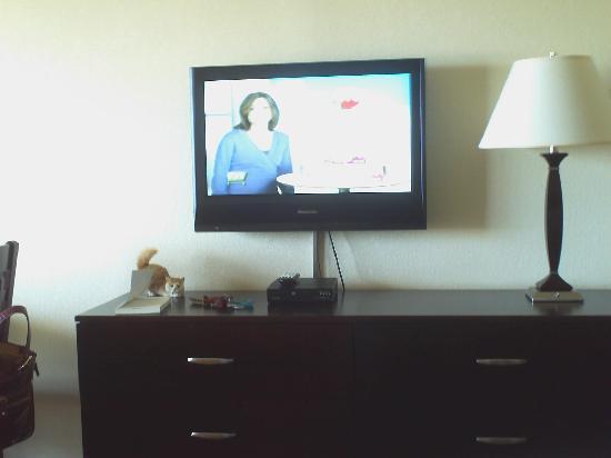 Atlantic Oceanfront Inn: TV in living area