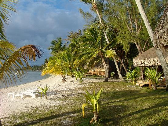 Eden Beach Hotel Bora Bora : Beach in front