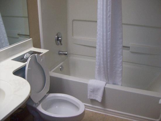 Microtel Inn & Suites by Wyndham Erie: Bathroom