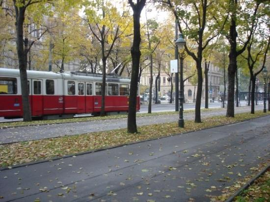 Ringstrasse: enourmous sidewalks with u-bahn going by