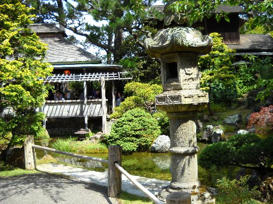 Japanese Tea Garden Picture Of San Francisco California Tripadvisor