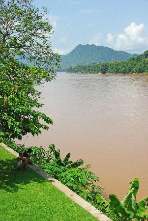 Mekong Estate: garden