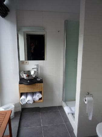 Hotel La Librairie: The bathroom