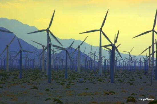 Image result for windmill tours palm springs