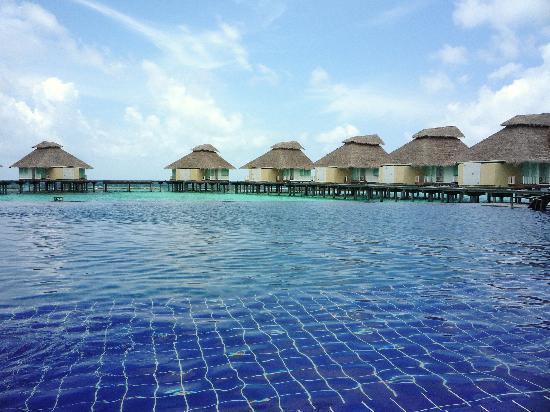 Ellaidhoo Maldives by Cinnamon: La piscine et les bungalows pilotis