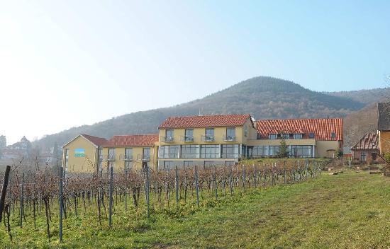 Wohlfuhlhotel Alte Rebschule: Ansicht Hotel aus d Weinbergen
