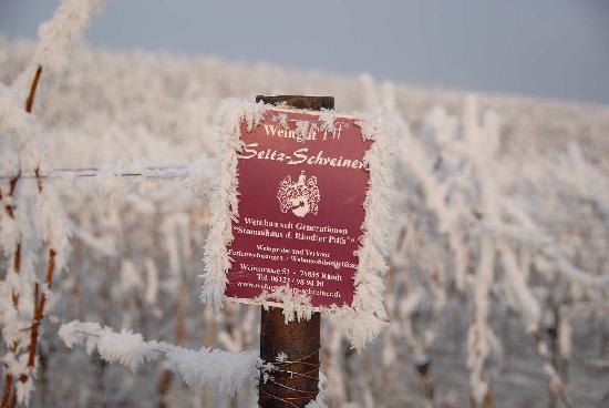 Wohlfuhlhotel Alte Rebschule: Winterstimmung 3