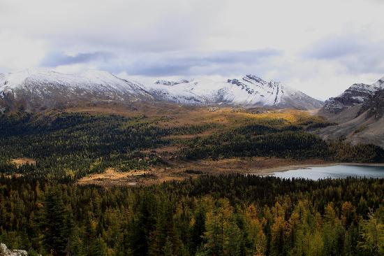 Assiniboine Lodge: ナブレットからアシニボイン・ロッジとワンダーパス