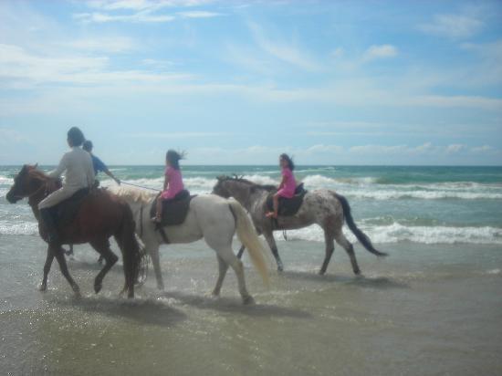 เนกซัสรีสอร์ท แอนด์ สปา การัมบูไน: Horse riding at Tuaran Beach Resort