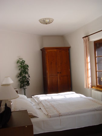 Pension Vetrnik: Room
