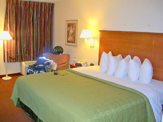 Quality Inn: Comfortable bed
