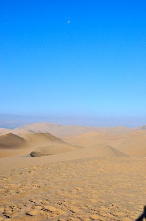 Hosteria Suiza: Dune buggy ride in desert-GREAT fun!!!