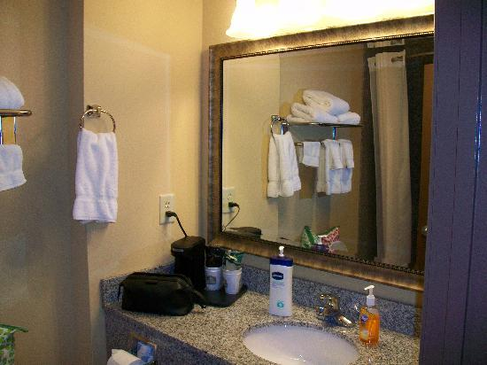 BEST WESTERN Motorsports Inn & Suites: Bathroom