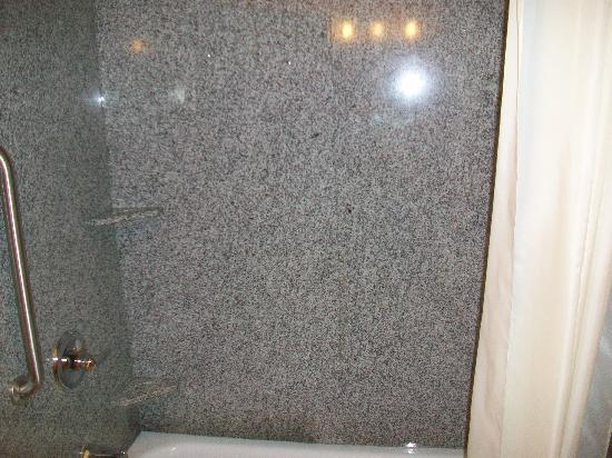 BEST WESTERN Motorsports Inn & Suites: Tub/ shower combo