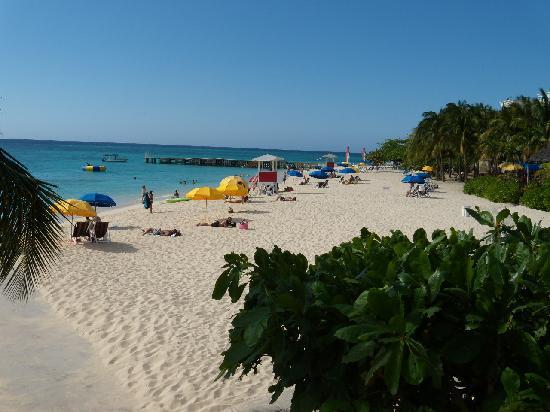 Toby's Resort: Doctor's Cave Beach