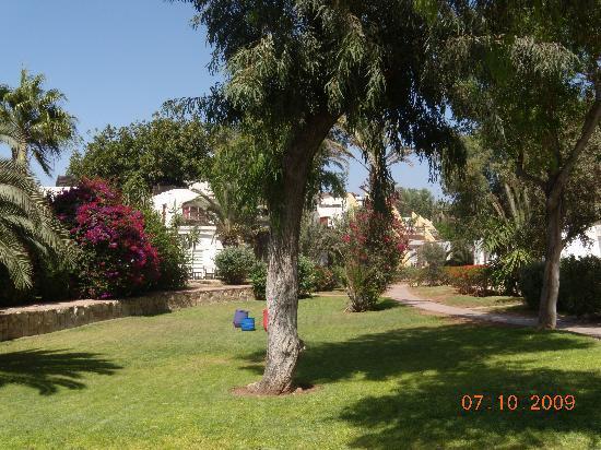 Club Med Agadir : Gardens beside bedrooms