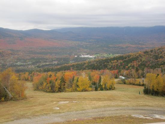 Bretton Woods: View from top of the Hill