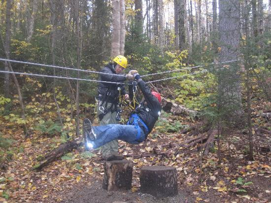 Bretton Woods: Training-test run of zipline
