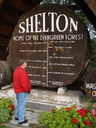 Shelton Name Gifts on Zazzle