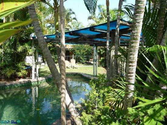 Balgal Beach Holiday Units: The pool