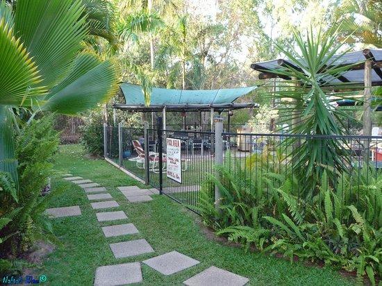Balgal Beach Holiday Units: The path between the units