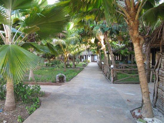 Villa de Coco Resort: Il giardino