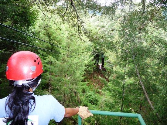 Antigua Canopy Tours