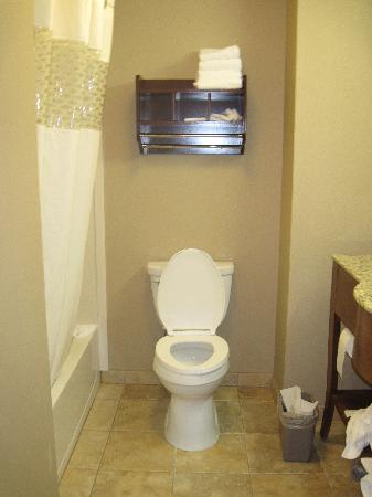 Hampton Inn & Suites Lodi: bathroom