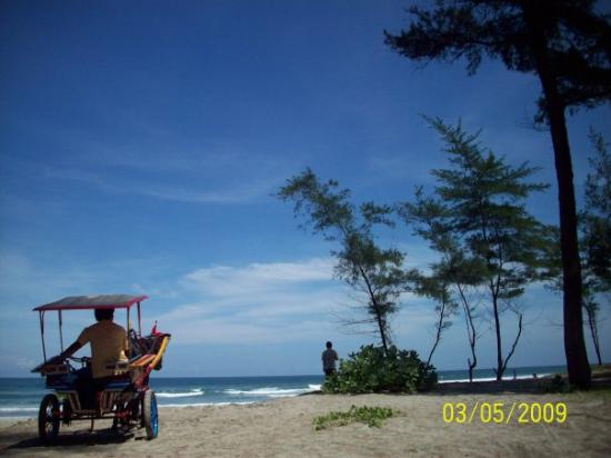 Bengkulu, Indonesia: bisa sambil naik delman menyusur pantai