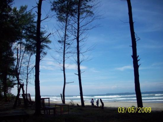 Pantai pasir panjang andalan pariwisata bengkulu