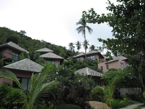 Merit Wellness & Mind Retreat Resort Samui: View of resort