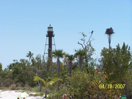 Sanibel Island Lighthouse: Light House And Eagles Nest