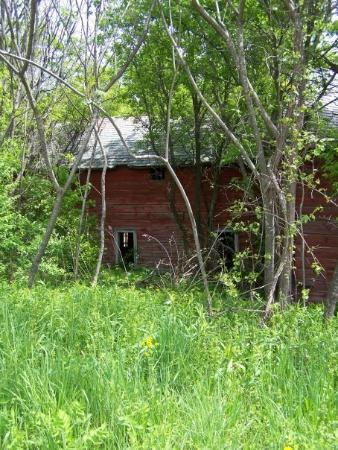 Old barn in Poultney, VT - Picture of Poultney, Vermont - TripAdvisor