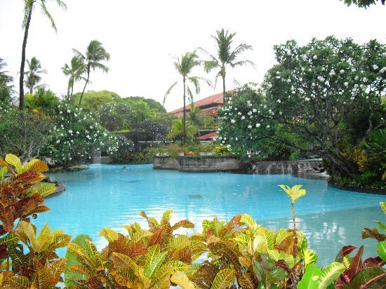 The Laguna, a Luxury Collection Resort & Spa: The pools were huge and gardens were beautiful