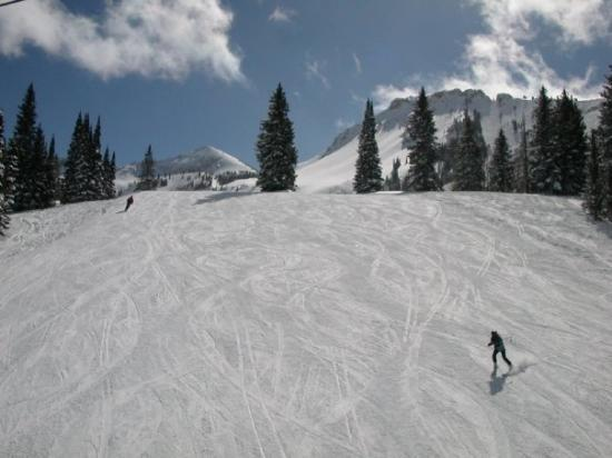 Alta, UT: It really was this uncrowded.  Awesome skiing!